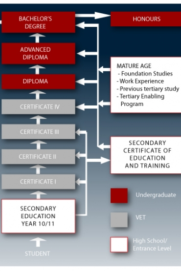 Study pathways diagram