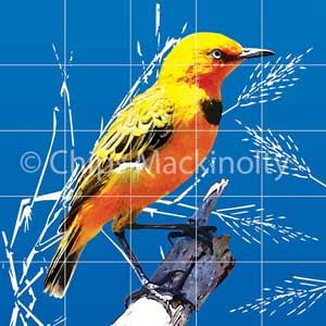 Yellow Chat Project