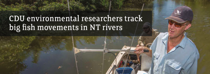 Researchers track fish movements in NT rivers