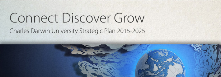 CDU strategic plan banner