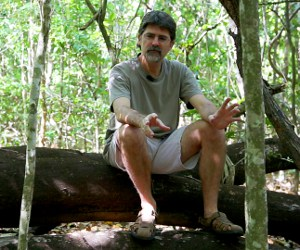 MOOC host Dr Stephen Reynolds ponders the wonders of natural selection in a tropical rainforest