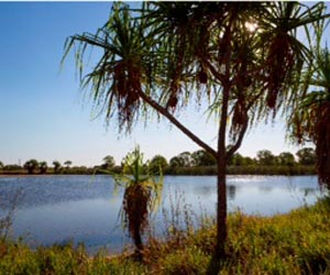 The lake at Palmerston campus will be enjoyed by residents of The Heights, Durack as well