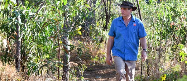 Dr Alan Andersen has become the first Territorian to be elected a Fellow of the Australian Academy of Science