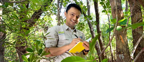 PhD candidate Sigit D. Sasmito said current land management practices in Papua's mangroves reduced carbon stocks substantially