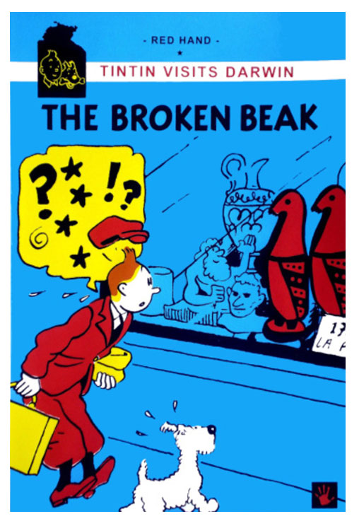 The Broken Beak