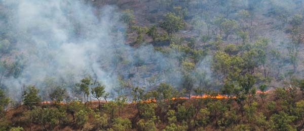 Strategic burning regimes to reduce greenhouse gas emissions are now widespread across Northern Australia