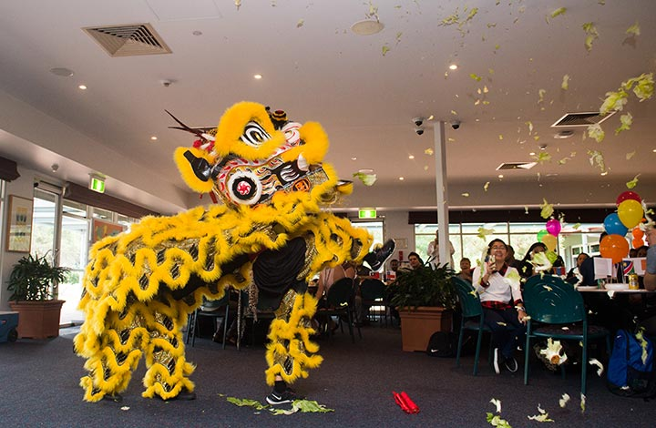 The Chung Wah Society presents a traditional Chinese lion dance