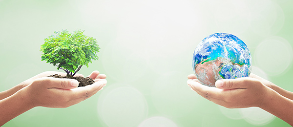The future is in our hands. Image: iStock