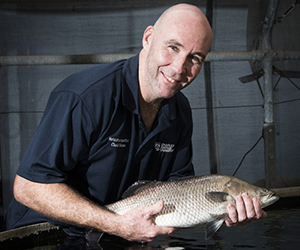 Chadd Mumme recommends eating locally caught fish over the wet season