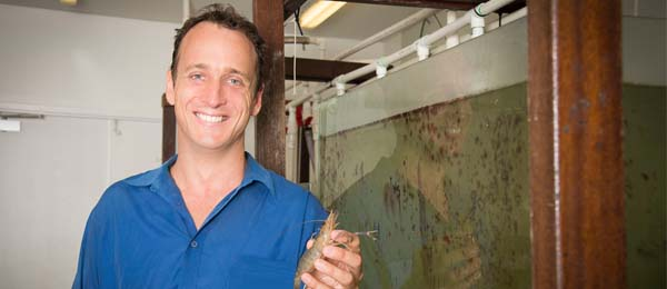 Dr Peter Novak is the first to follow the life cycle of an iconic freshwater prawn species