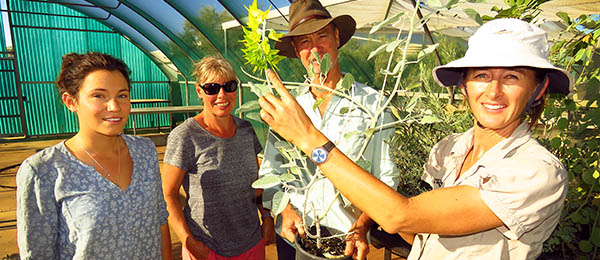 Horticulturalist Sarah Roberts (right) introduces students to a flowering Crotalaria cunninghamii