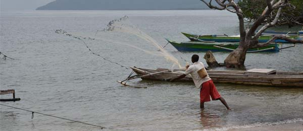 A fisher in Timor-Leste casts his net over small schools of inshore fish in front of his village