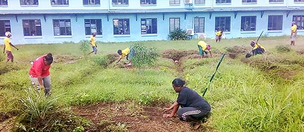 The development of school gardens is helping Papua New Guinea communities produce their own food