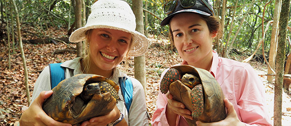 Environmental science student Ella Monique is finding out more about the yellow-footed tortoise. Pictured with classmate Tess Hanna, who holds a red-footed tortoise