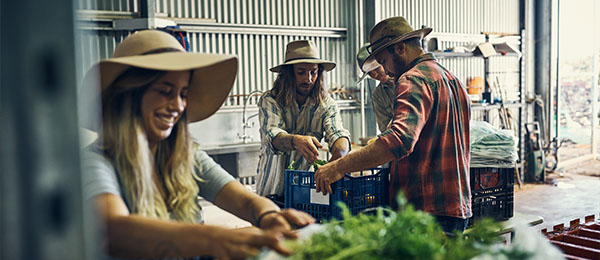 CDU has received $735,000 in funding from the Australian Government to develop the local industry's food manufacturing capabilities.