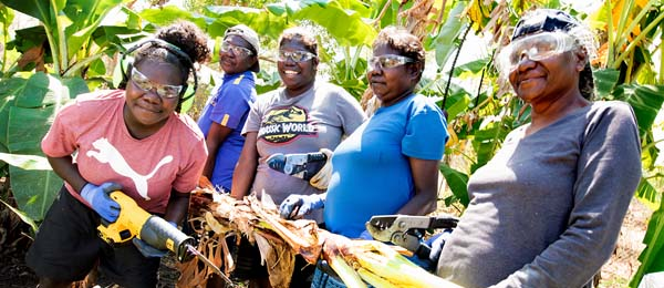 Tiwi Island VET students working on banana plants at Casuarina campus