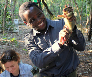 CDU Conservation and Land Management student Comfort Ncube holds a northern brushtail possum at the Territory Wildlife Park. CDU VET lecturer Thalie Partridge (left) records data. Photographer: Damien Stannioch