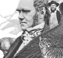 Charles Darwin, Evolution & Tropical Australia