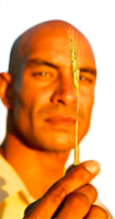 Man holding a peice of wheat plant