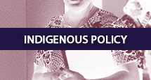 BA_INDIGENOUS POLICY