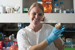 Dr Heidi Luter has looked into the impacts of sewage effluent on a marine sponge species in the NT