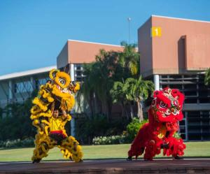 The Chinese Lion Dance brings luck and blessing