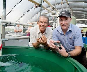 AusTurtle President Michael Guinea and CDU Maritime and Seafood Team Leader Chadd Mumme check out the new facilities at CDU's turtle rehabilitation facility
