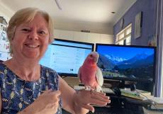 Sue Tucker and Scratch the galah