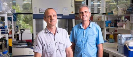 Menzies malaria experts Professor Nicholas Anstey and Professor Ric Price