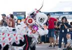 Chinese Lion Dancers perform at Open Day