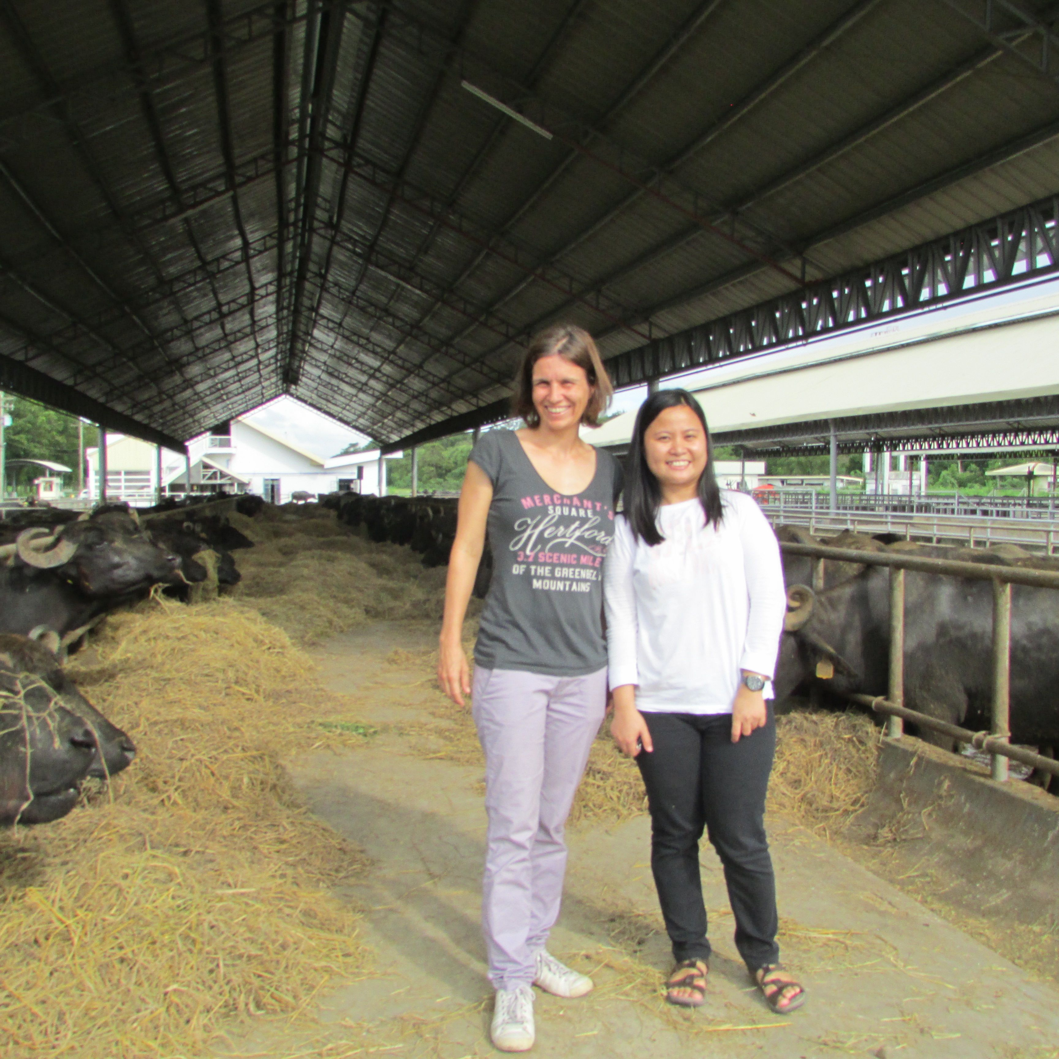 Climate-Smart Livestock Project